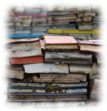 Rotting Books